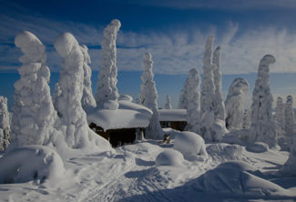 Winter Lapland